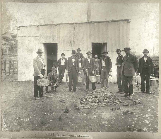 Professional rat catchers, Sydney 1900 © State of New South Wales through the State Records Authority of NSW'