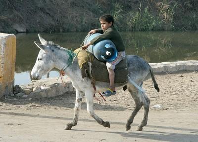 Boy on donkey JB